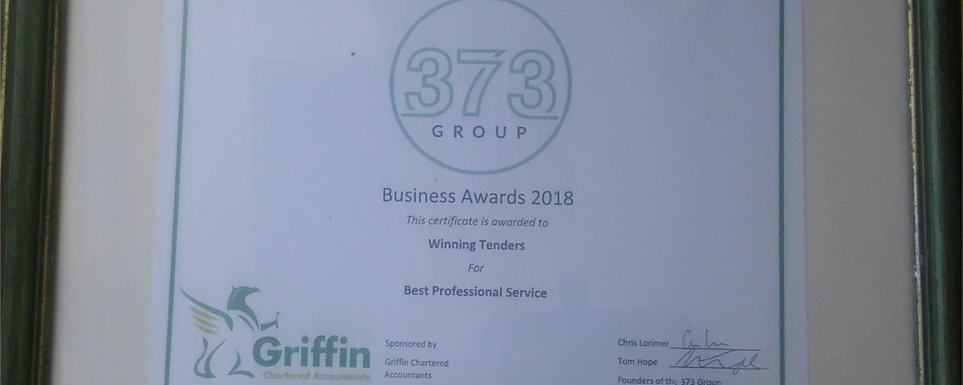 Best Professional Service 373 Business Award